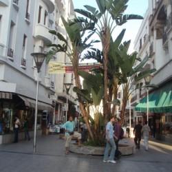 Fußgängerzone in Casablanca