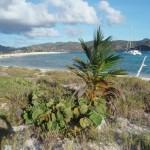 Sand Island
