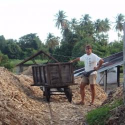 Zuckerrohr-Transportmittel