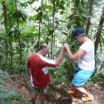 immer galant selbst im Regenwald