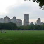 grüne Lunge von Manhattan