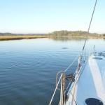 einsame Bucht mit Delphin