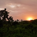 Sonnenuntergang auf Isabela