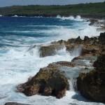 die Küste von Niue