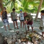 1. Lektion Kokosnuss-öffnen