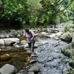 Wanderweg mit Hindernis
