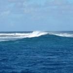 die Wellen markieren das Riff