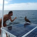klecks ja nicht auf unsere Solarzellen
