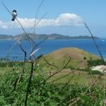 Fidschi ist schön