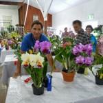zu Besuch in einer Orchideen-Ausstellung
