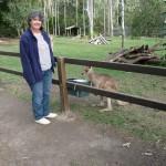 im Tierpark von Rockhampton