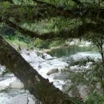 krokofreier River