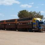 LKW oder Zug?